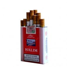 Gudang Garam Halim Red 20s